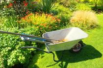 Baum- und Gartenpflege